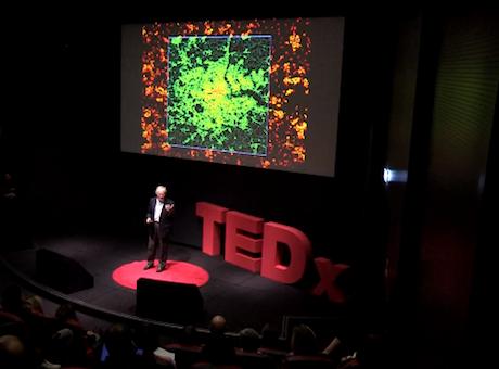 TEDxLondon December 2013